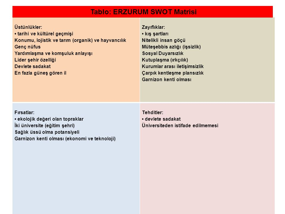 Tablo: ERZURUM SWOT Matrisi
