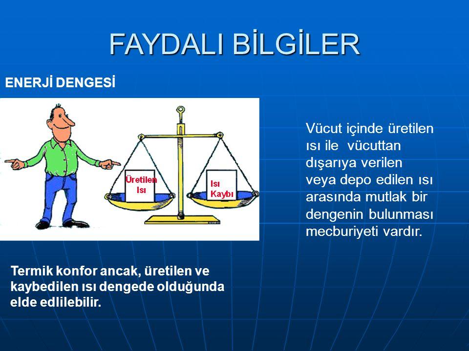 FAYDALI BİLGİLER ENERJİ DENGESİ.