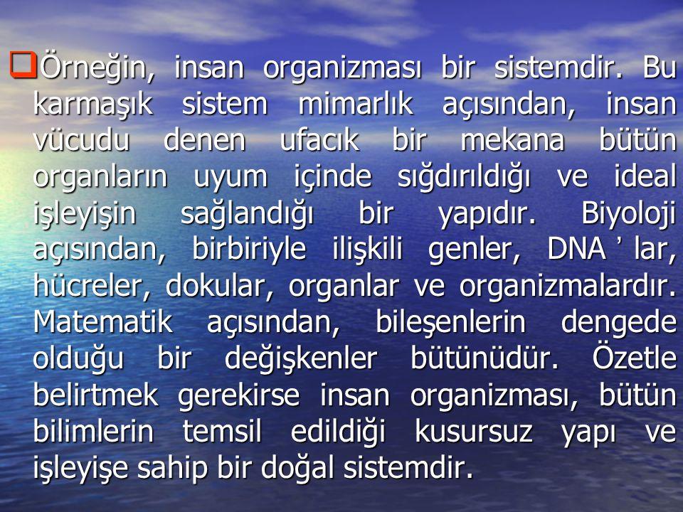 Örneğin, insan organizması bir sistemdir