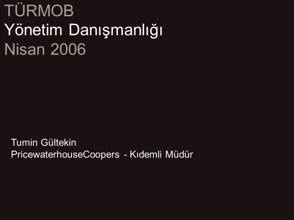Yönetim Danışmanlığı Nisan 2006