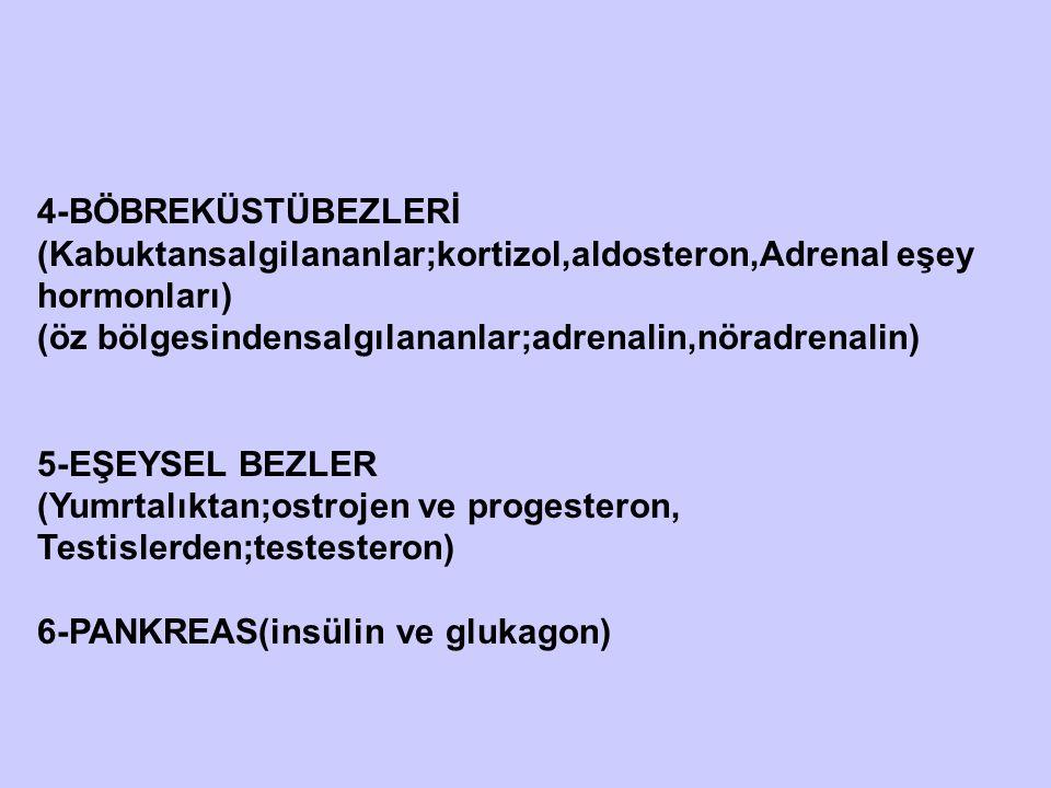 4-BÖBREKÜSTÜBEZLERİ (Kabuktansalgilananlar;kortizol,aldosteron,Adrenal eşey hormonları) (öz bölgesindensalgılananlar;adrenalin,nöradrenalin)