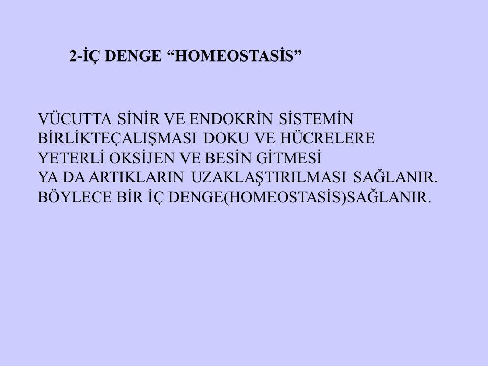 2-İÇ DENGE HOMEOSTASİS