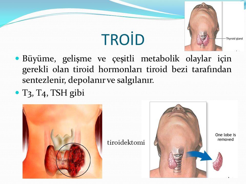 TROİD Büyüme, gelişme ve çeşitli metabolik olaylar için gerekli olan tiroid hormonları tiroid bezi tarafından sentezlenir, depolanır ve salgılanır.