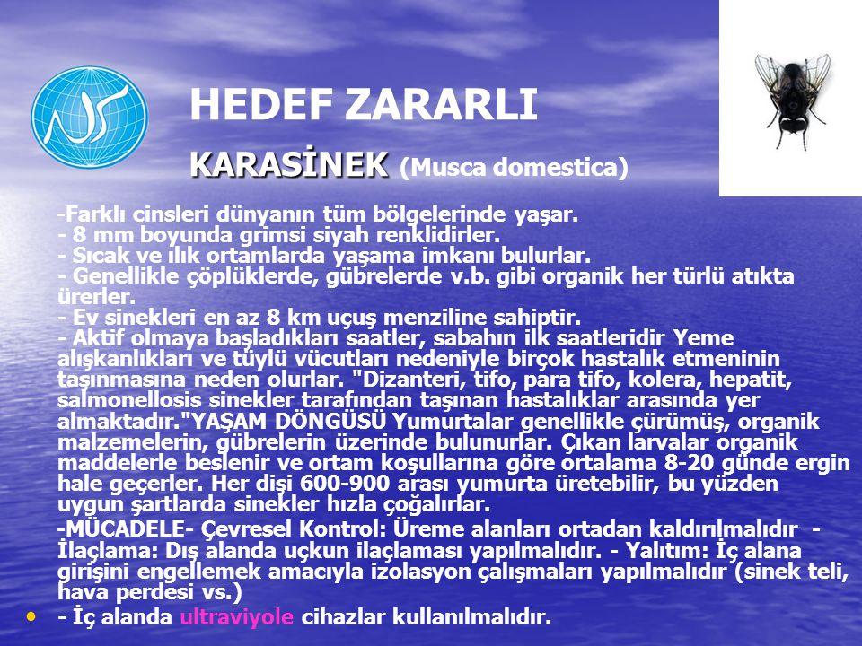 HEDEF ZARARLI KARASİNEK (Musca domestica)