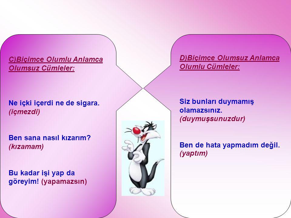 C)Biçimce Olumlu Anlamca Olumsuz Cümleler:
