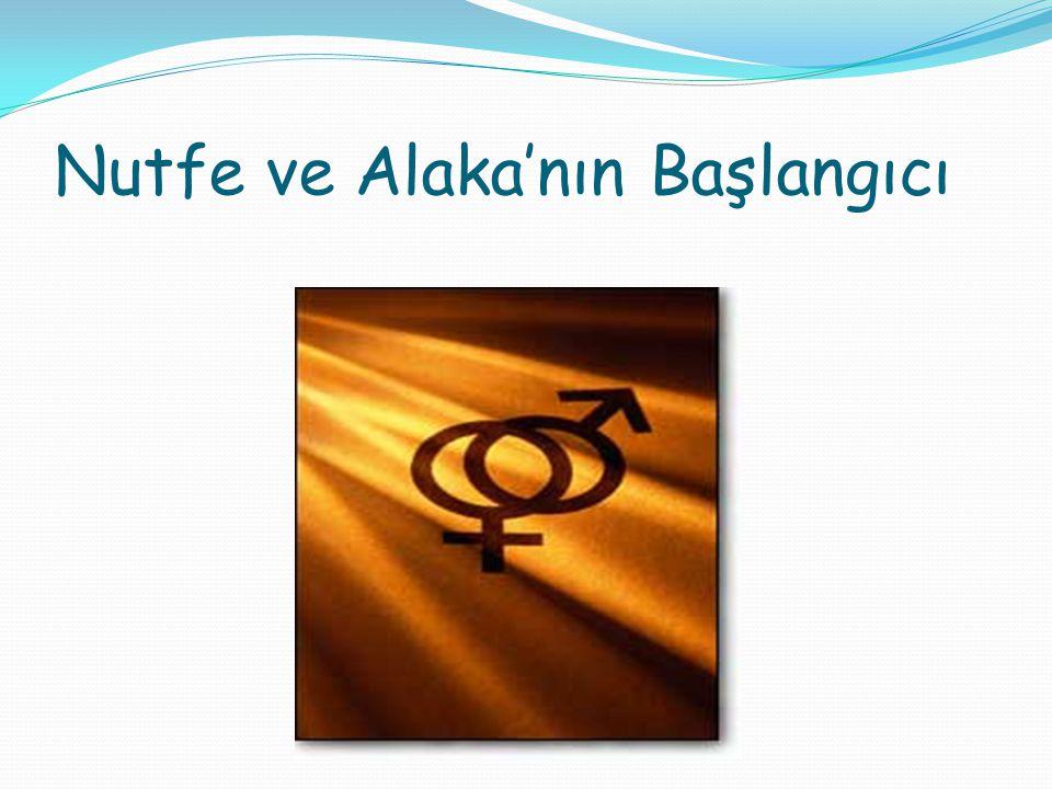 Nutfe ve Alaka'nın Başlangıcı