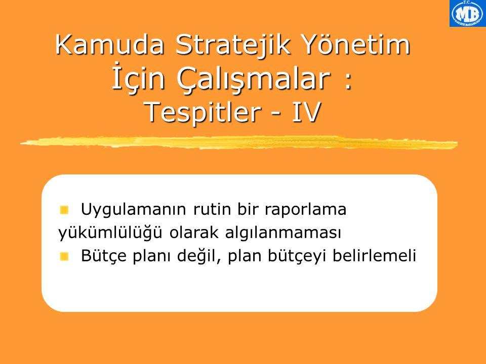 Kamuda Stratejik Yönetim İçin Çalışmalar : Tespitler - IV