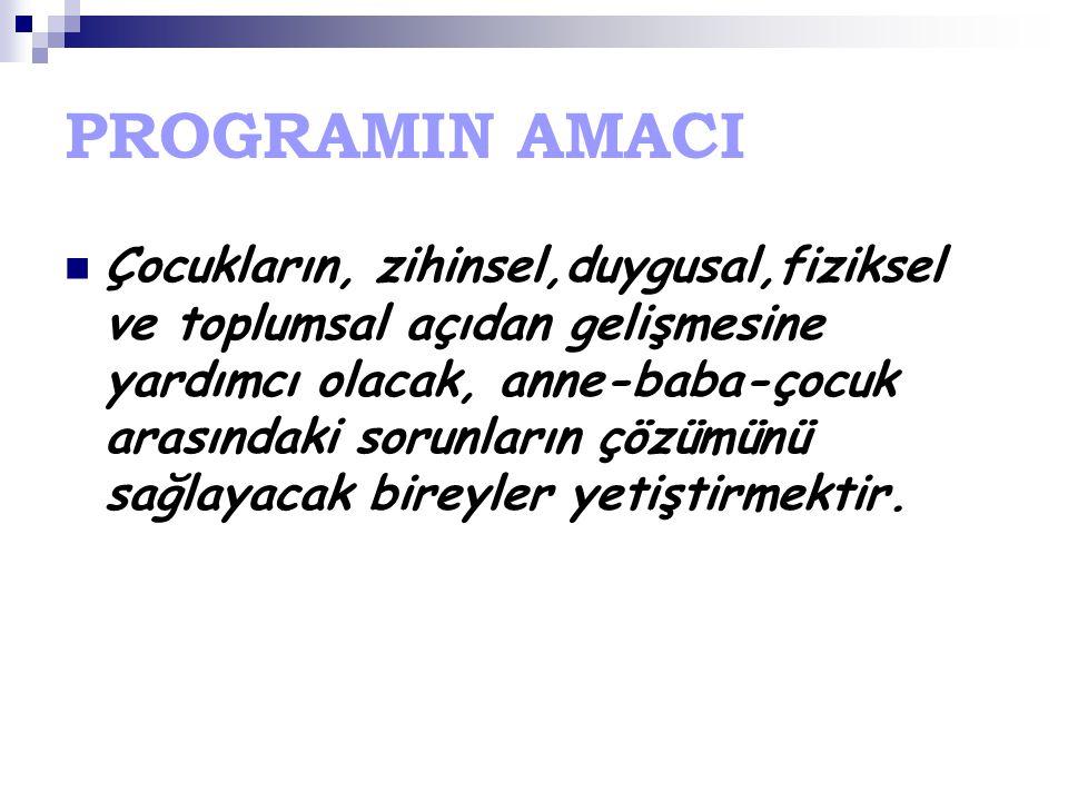 PROGRAMIN AMACI