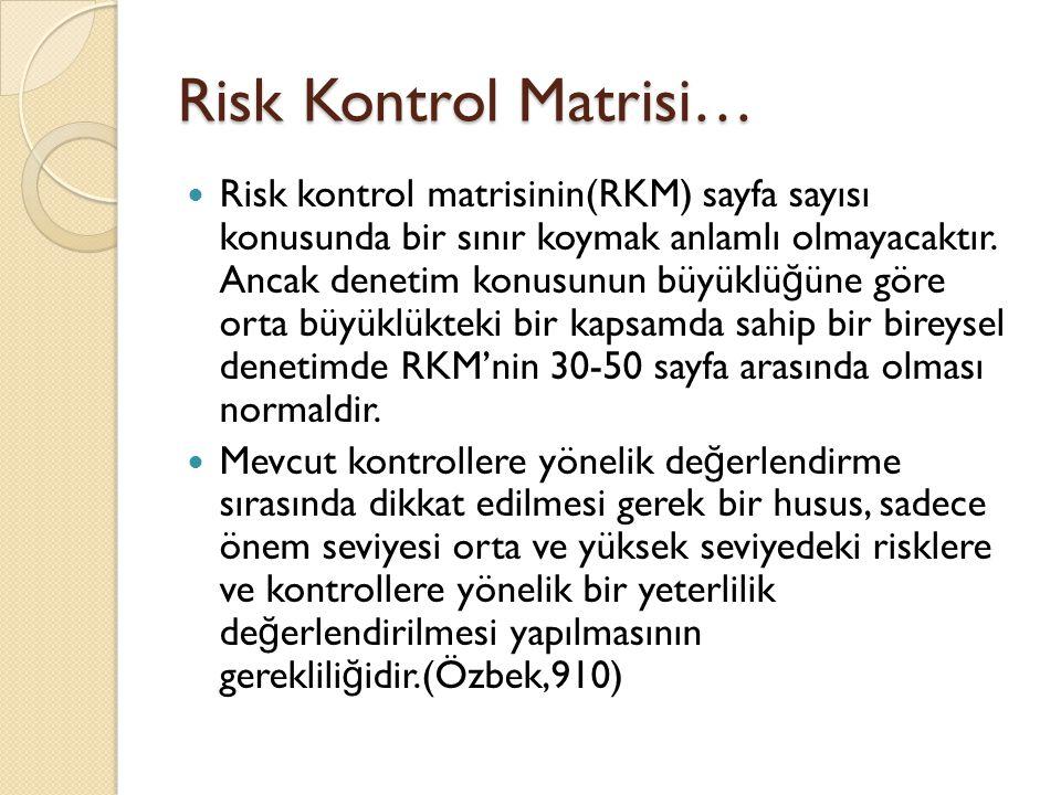 Risk Kontrol Matrisi…