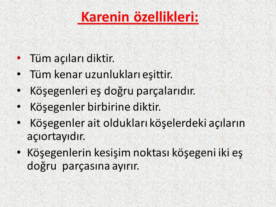 Karenin özellikleri: Tüm açıları diktir.