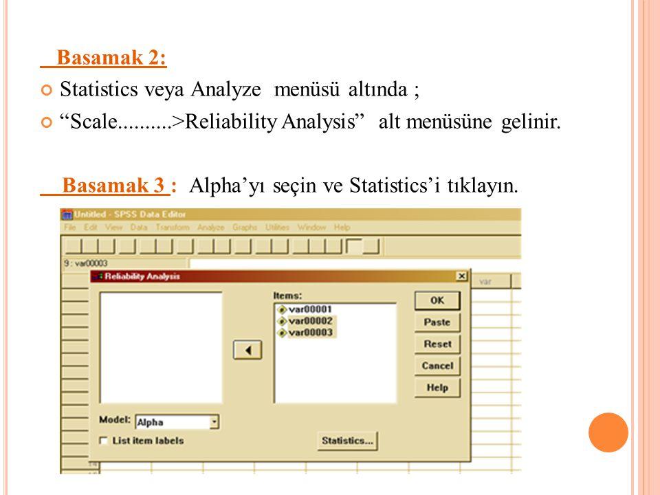 Basamak 2: Statistics veya Analyze menüsü altında ;