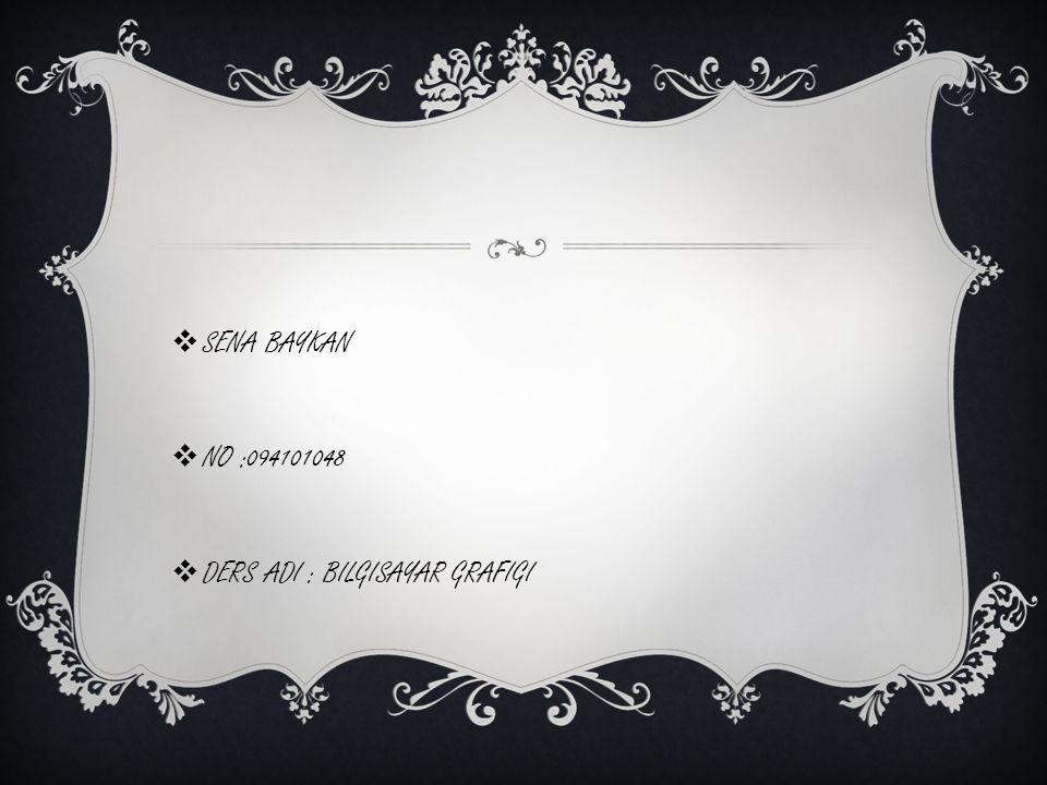 SENA BAYKAN NO :094101048 DERS ADI : BILGISAYAR GRAFIGI