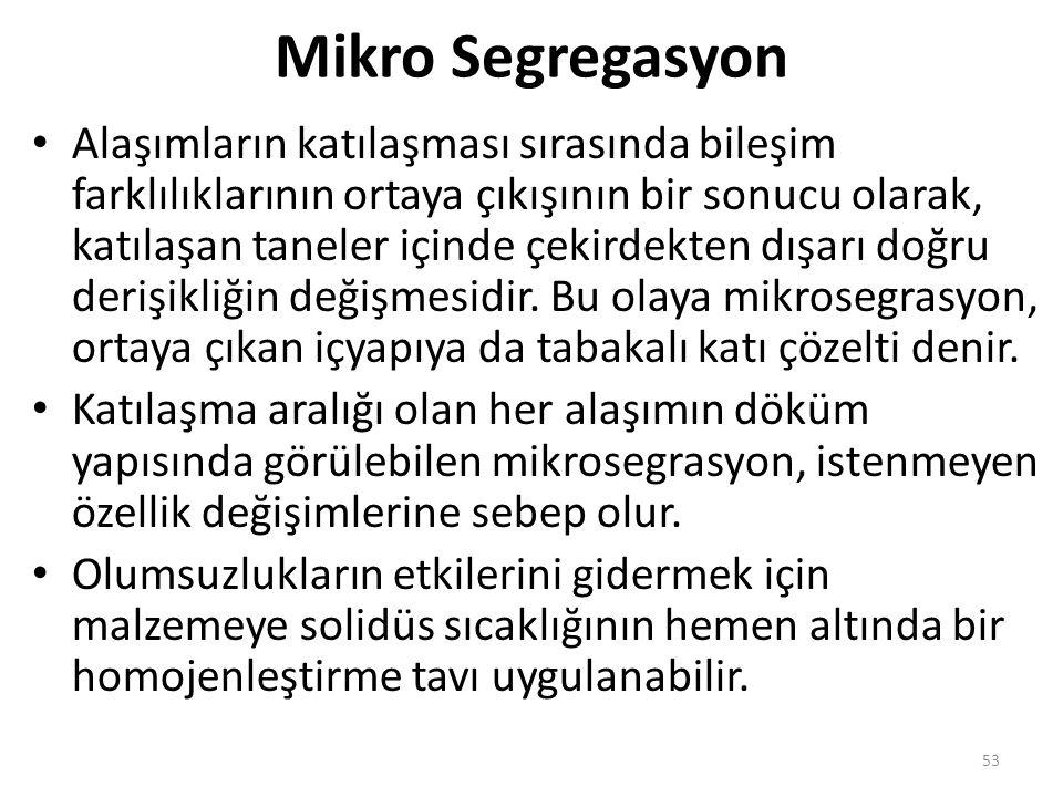 Mikro Segregasyon