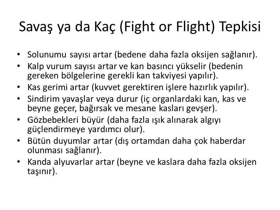 Savaş ya da Kaç (Fight or Flight) Tepkisi