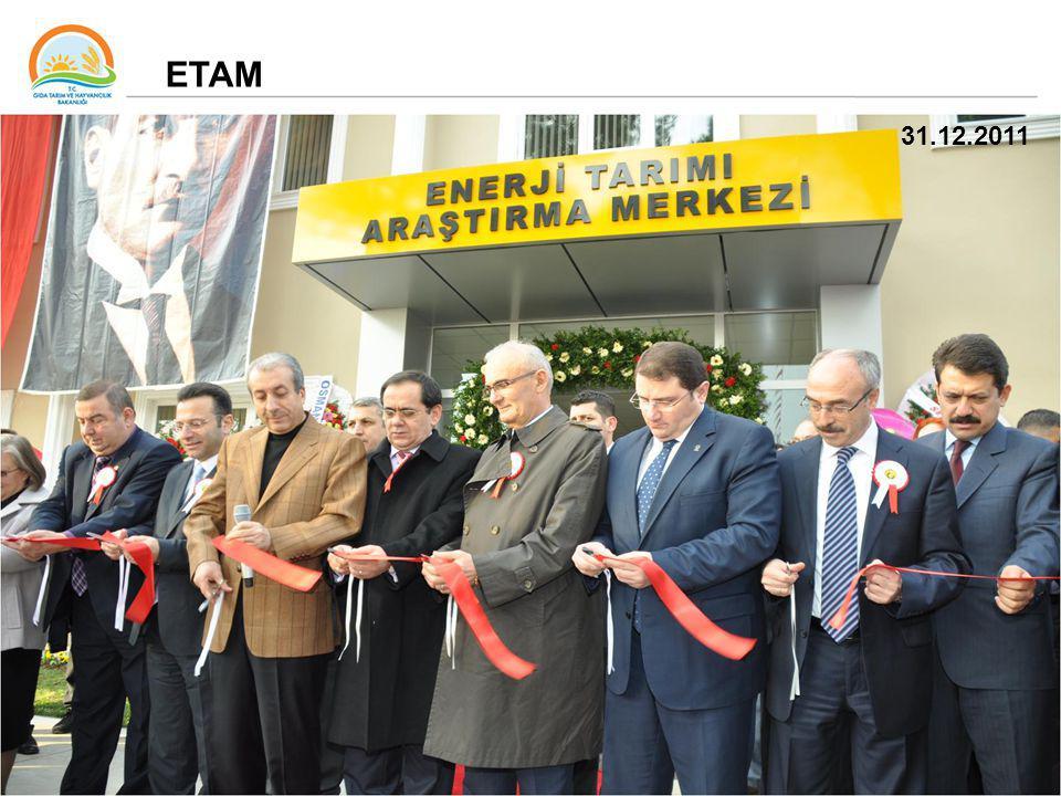 ETAM 31.12.2011