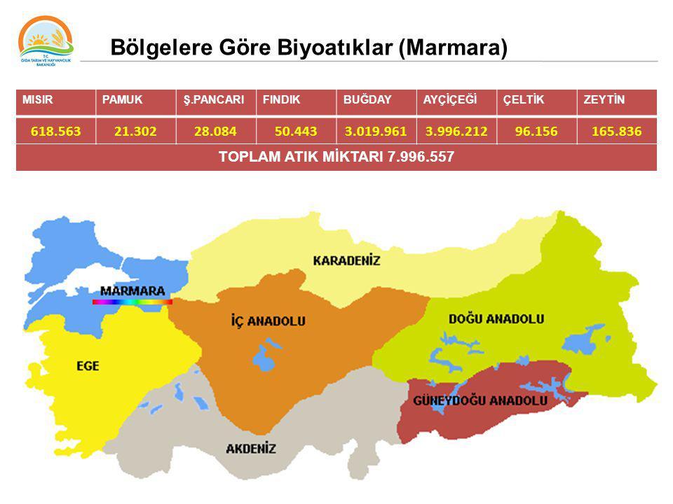 Bölgelere Göre Biyoatıklar (Marmara)