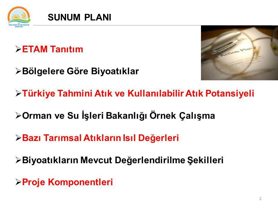 SUNUM PLANI ETAM Tanıtım. Bölgelere Göre Biyoatıklar. Türkiye Tahmini Atık ve Kullanılabilir Atık Potansiyeli.