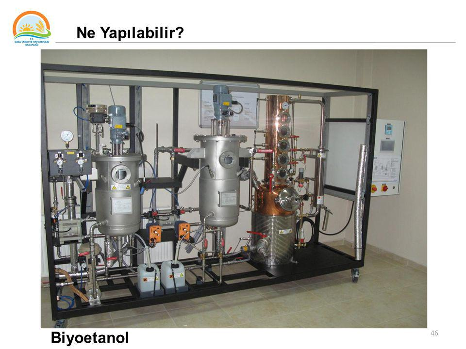 Ne Yapılabilir Biyoetanol