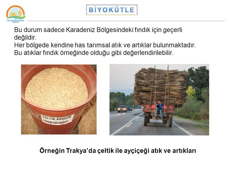 BİYOKÜTLE Bu durum sadece Karadeniz Bölgesindeki fındık için geçerli değildir.
