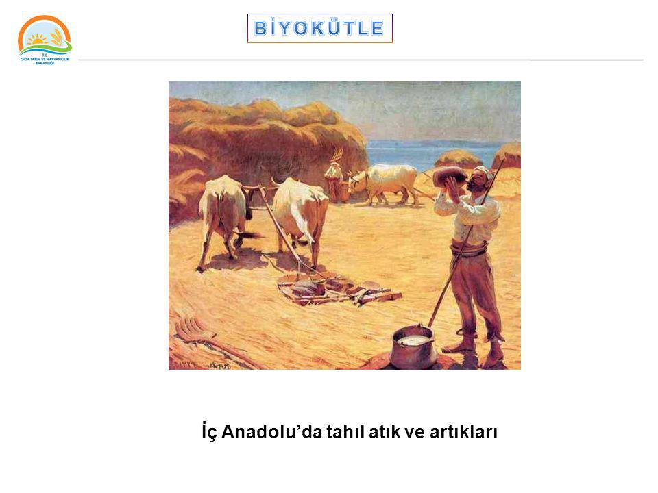 İç Anadolu'da tahıl atık ve artıkları