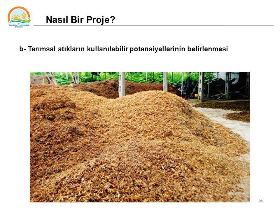 Nasıl Bir Proje b- Tarımsal atıkların kullanılabilir potansiyellerinin belirlenmesi