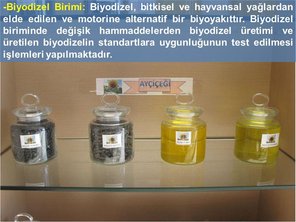 -Biyodizel Birimi: Biyodizel, bitkisel ve hayvansal yağlardan elde edilen ve motorine alternatif bir biyoyakıttır.