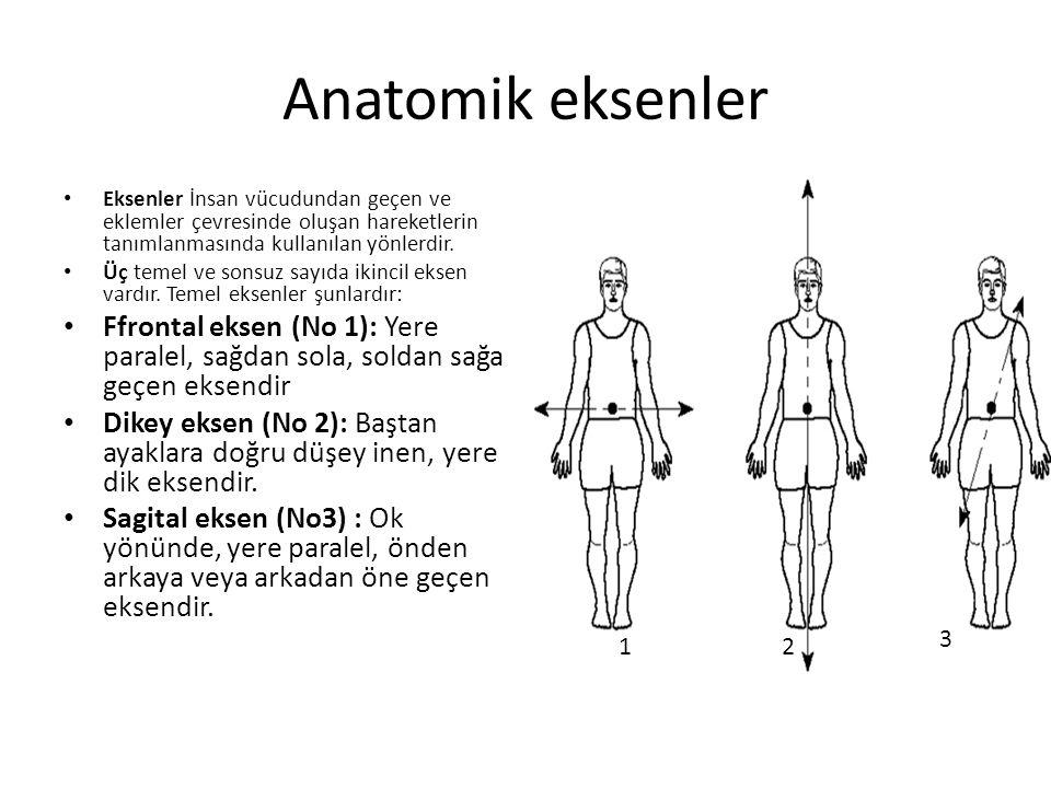 Anatomik eksenler Eksenler İnsan vücudundan geçen ve eklemler çevresinde oluşan hareketlerin tanımlanmasında kullanılan yönlerdir.