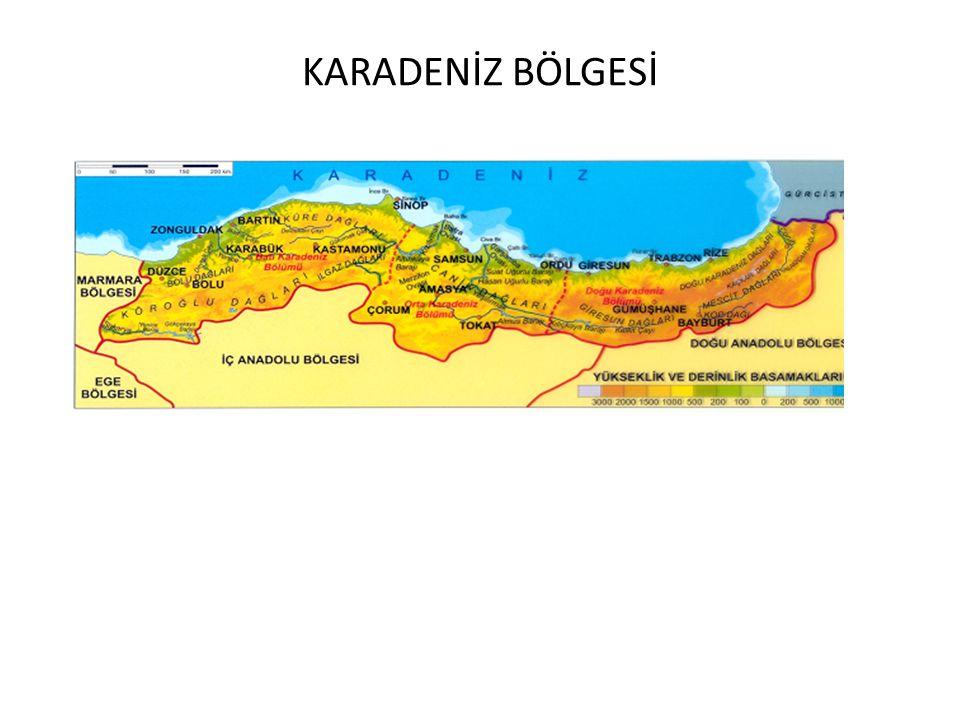 KARADENİZ BÖLGESİ