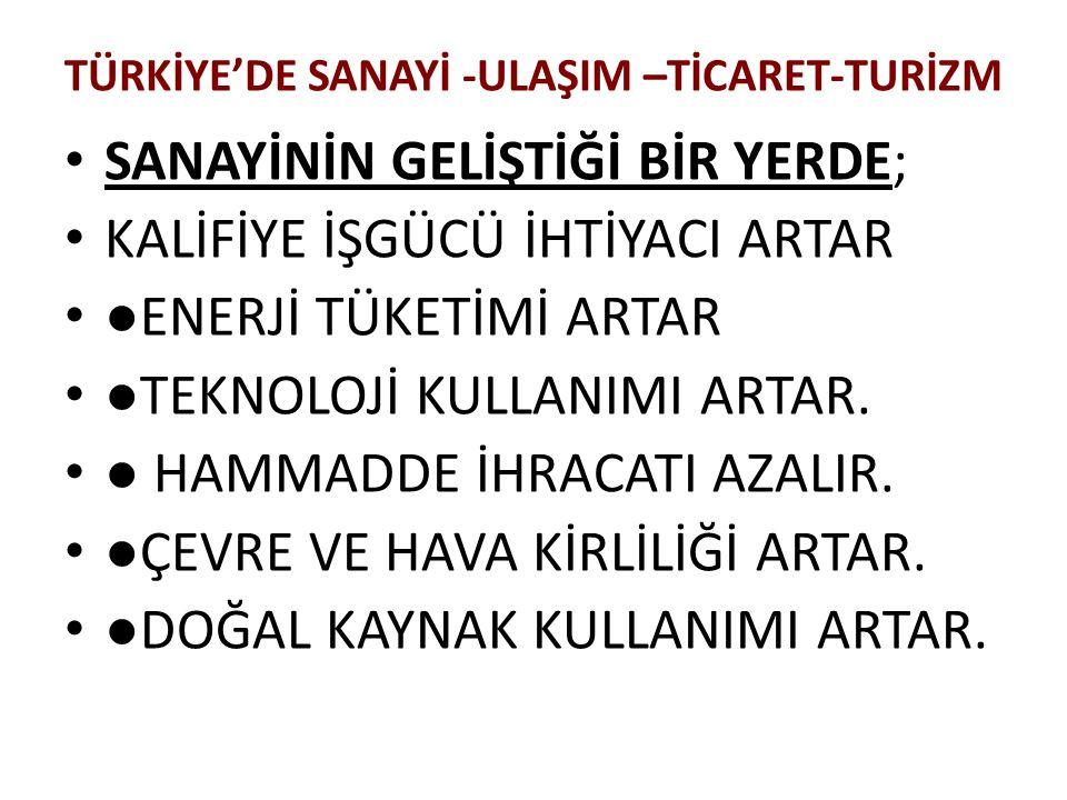 TÜRKİYE'DE SANAYİ -ULAŞIM –TİCARET-TURİZM