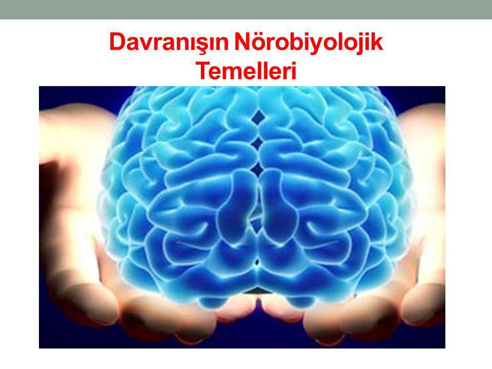 Davranışın Nörobiyolojik Temelleri
