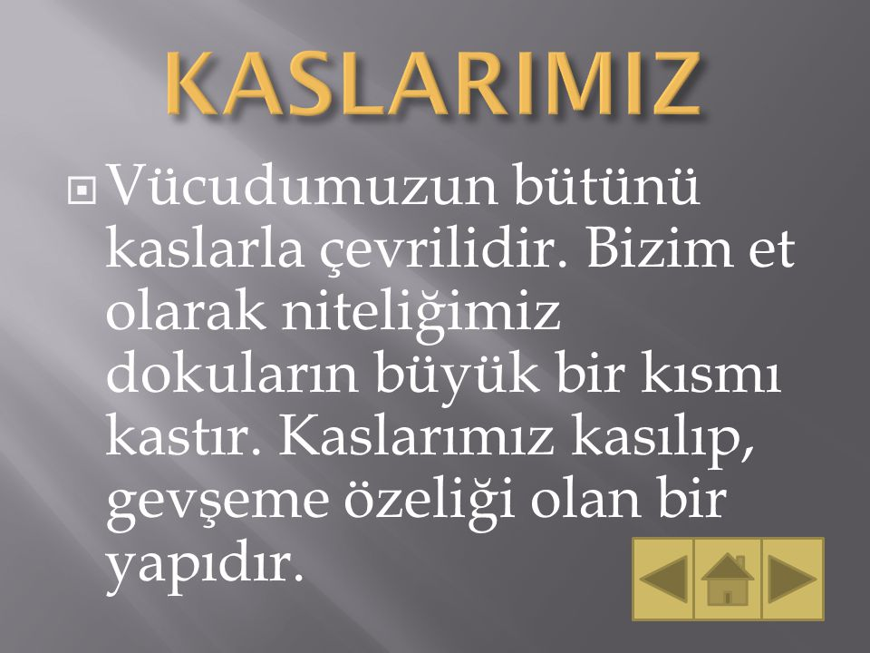 KASLARIMIZ