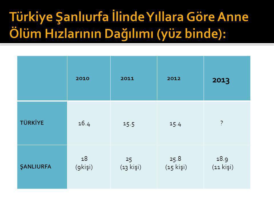 Türkiye Şanlıurfa İlinde Yıllara Göre Anne Ölüm Hızlarının Dağılımı (yüz binde):