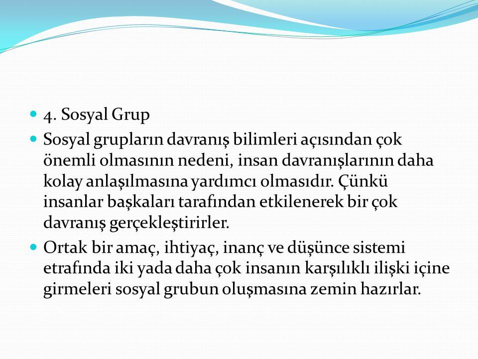 4. Sosyal Grup