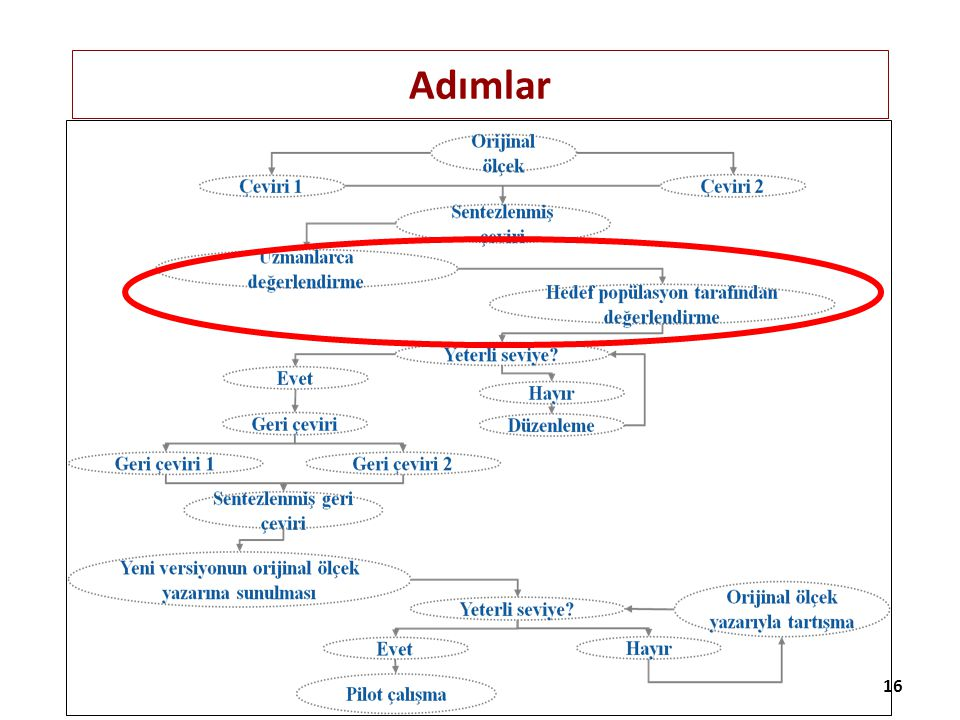 Adımlar Uzmanlarca sentezlenen versiyonların analiz edilmesi