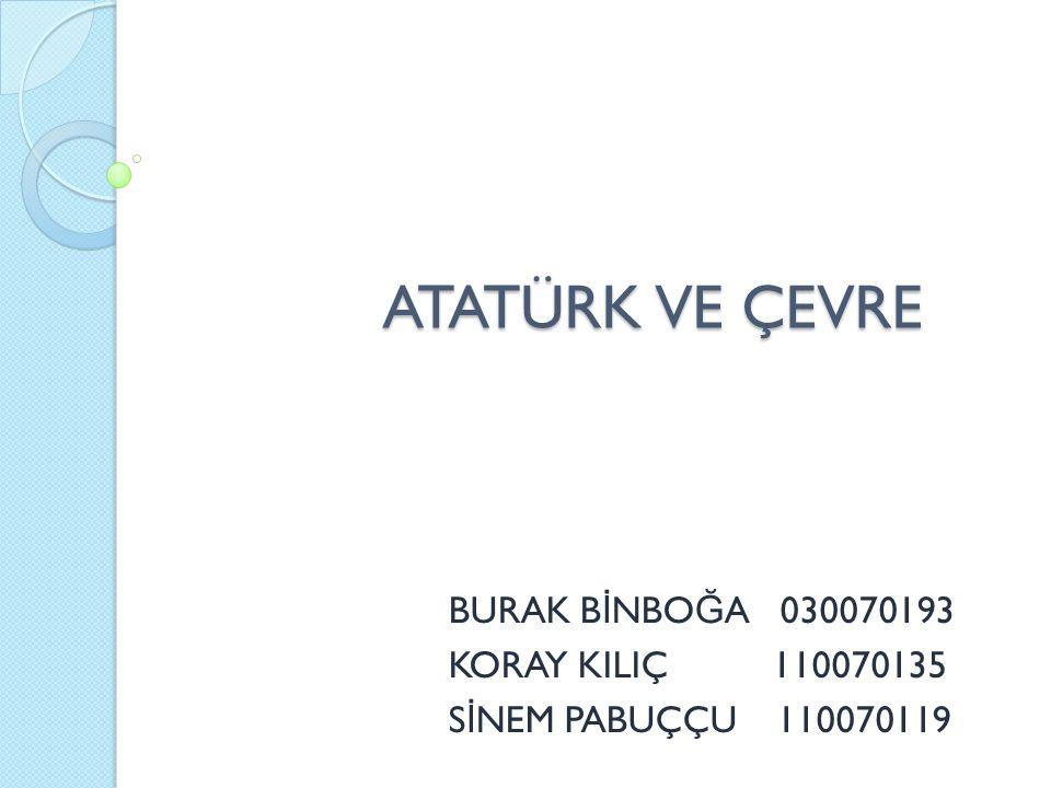 BURAK BİNBOĞA 030070193 KORAY KILIÇ 110070135 SİNEM PABUÇÇU 110070119