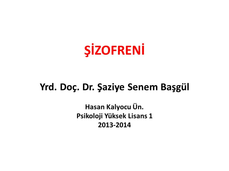 Yrd. Doç. Dr. Şaziye Senem Başgül Psikoloji Yüksek Lisans 1