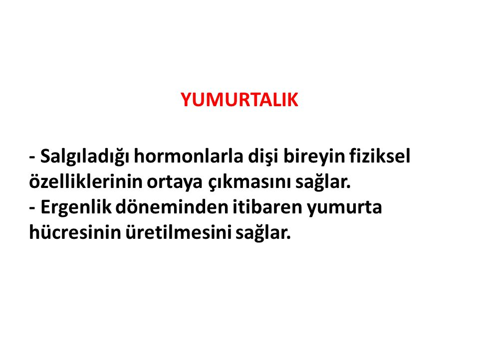 YUMURTALIK