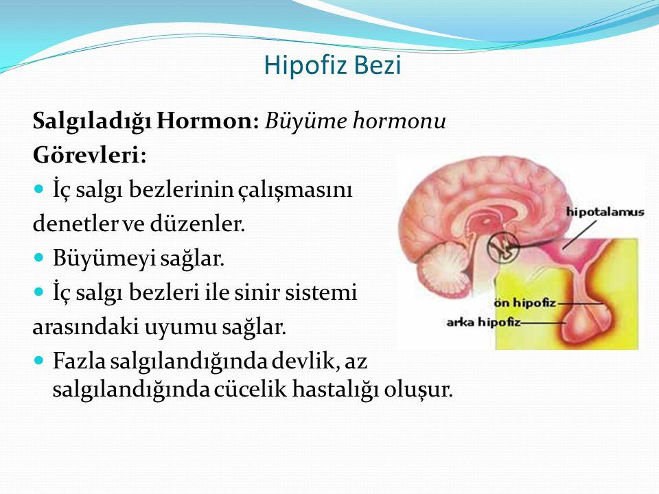 Hipofiz Bezi Salgıladığı Hormon: Büyüme hormonu Görevleri: