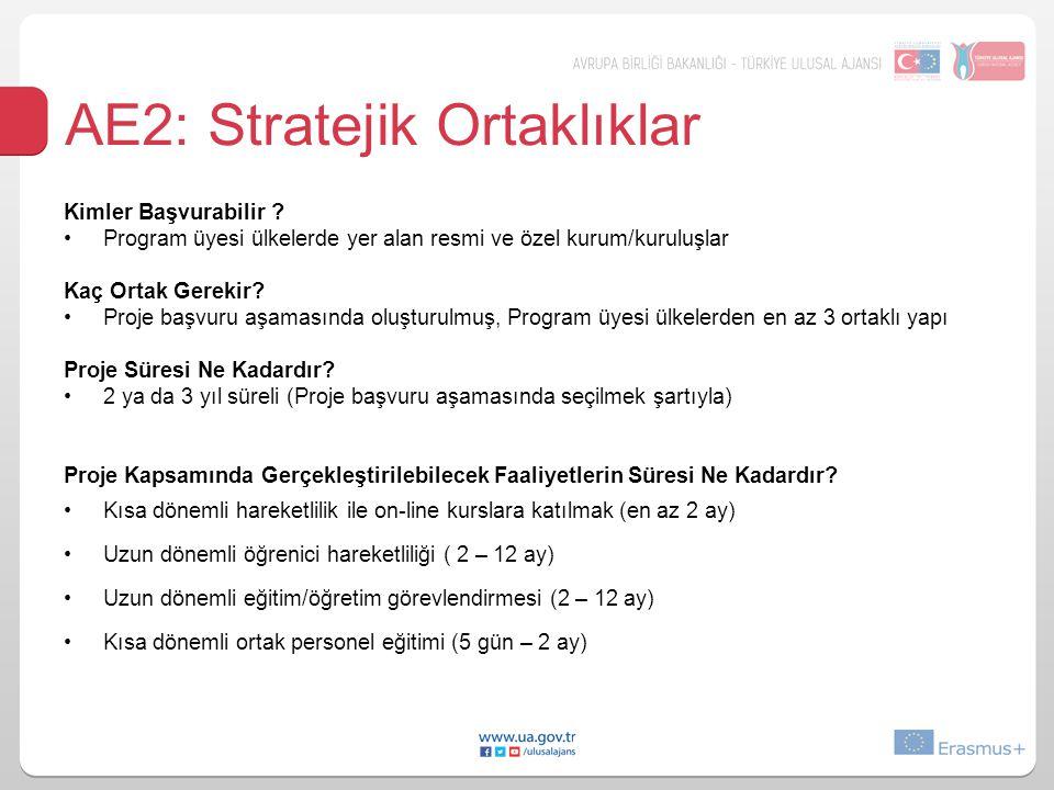 AE2: Stratejik Ortaklıklar