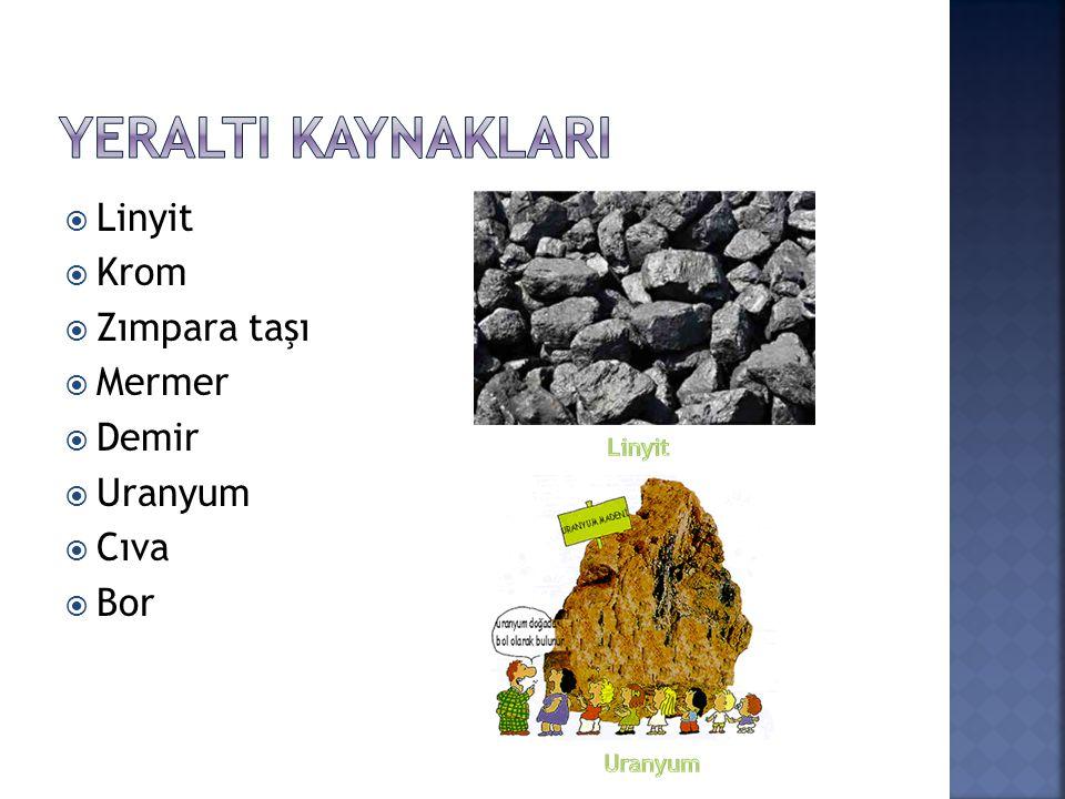 YeraltI KaynaklarI Linyit Krom Zımpara taşı Mermer Demir Uranyum Cıva