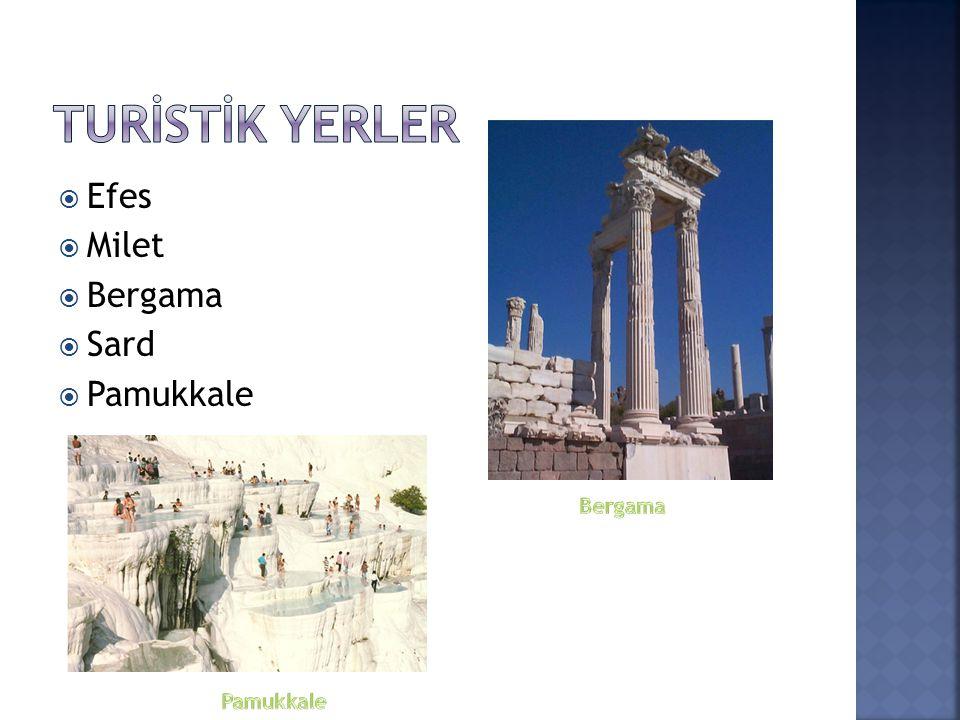 Turİstİk Yerler Efes Milet Bergama Sard Pamukkale Bergama Pamukkale