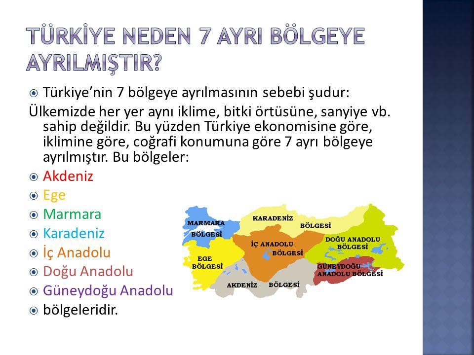 Türkİye Neden 7 AyrI Bölgeye AyrIlmIştIr