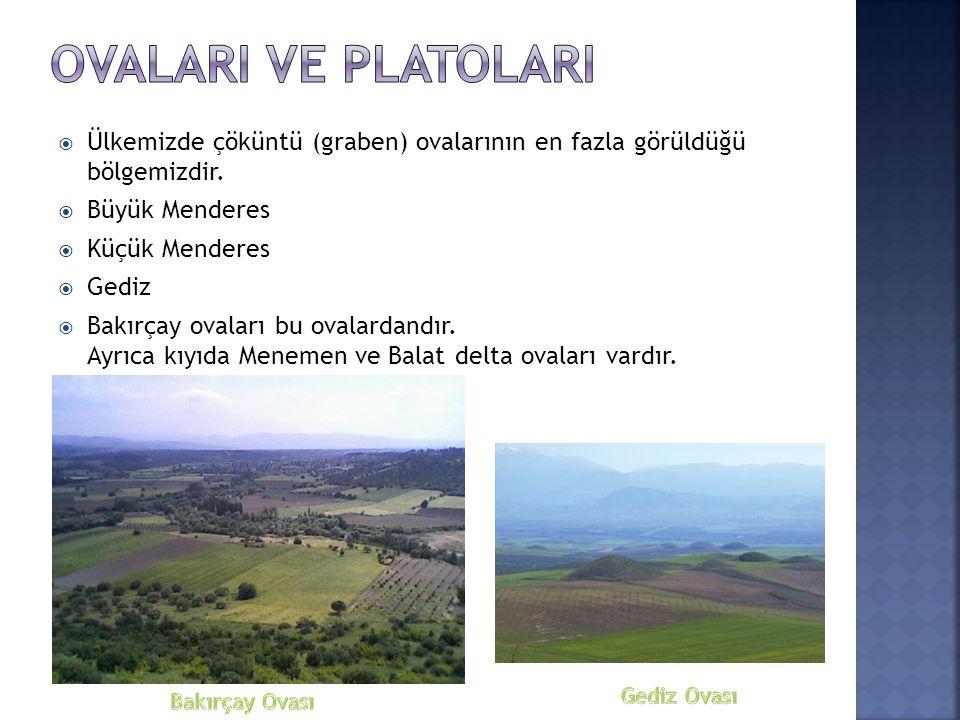 OvALARI VE PLATOLARI Ülkemizde çöküntü (graben) ovalarının en fazla görüldüğü bölgemizdir. Büyük Menderes.
