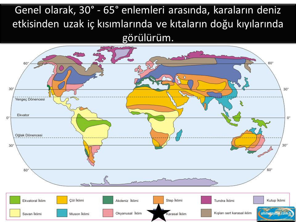 Genel olarak, 30° - 65° enlemleri arasında, karaların deniz etkisinden uzak iç kısımlarında ve kıtaların doğu kıyılarında görülürüm.