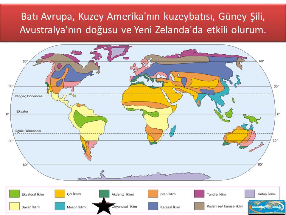Batı Avrupa, Kuzey Amerika nın kuzeybatısı, Güney Şili, Avustralya nın doğusu ve Yeni Zelanda da etkili olurum.