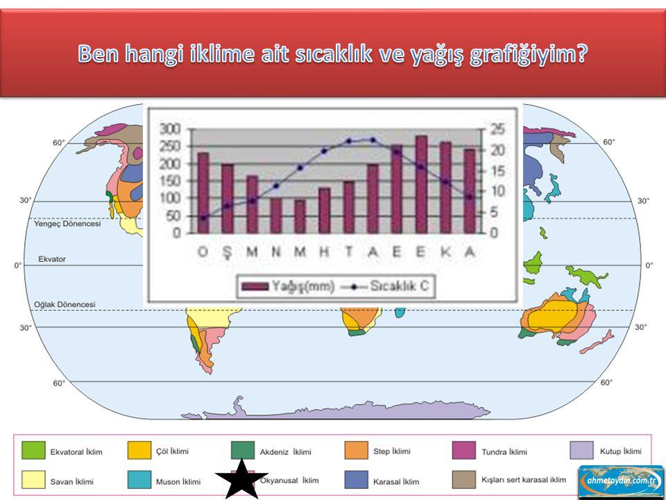 Ben hangi iklime ait sıcaklık ve yağış grafiğiyim