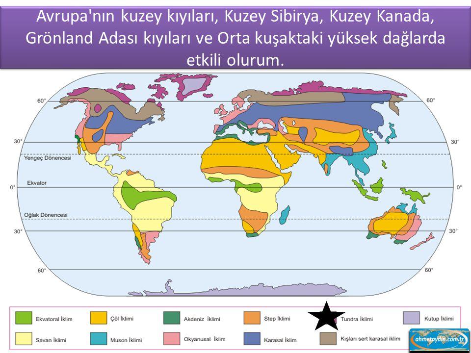 Avrupa nın kuzey kıyıları, Kuzey Sibirya, Kuzey Kanada, Grönland Adası kıyıları ve Orta kuşaktaki yüksek dağlarda etkili olurum.