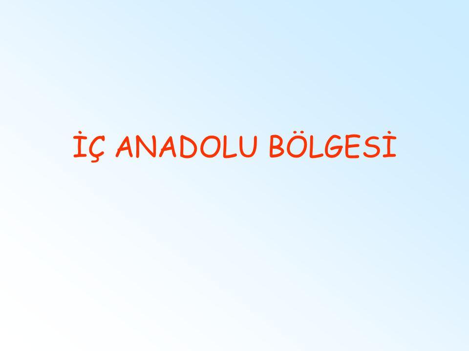İÇ ANADOLU BÖLGESİ
