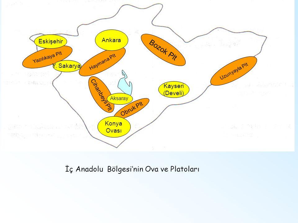 İç Anadolu Bölgesi'nin Ova ve Platoları