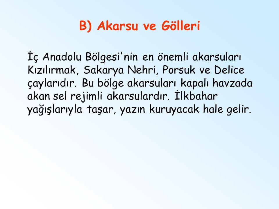B) Akarsu ve Gölleri